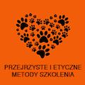 koci-ekspert.pl