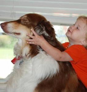 Jak głaskać psa?