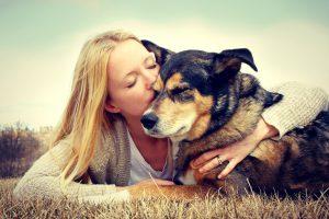 Jak szkolić swojego psa?