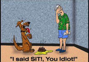 szkolenie-psa