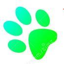 Jak się szkoli niesłyszącego psa?