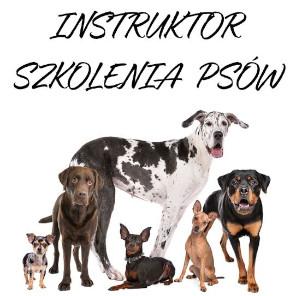 Instruktor szkolenia psów Kraków